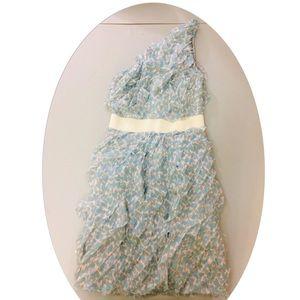 Adam Lippes Blue hearts one shoulder ruffle dress